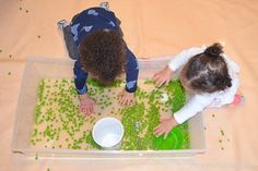Green peas are not only fun to eat they also make a fun sensory bin filler! Here is a great taste safe sensory bin for babies, toddlers & preschoolers! Baby Sensory Play, Sensory Bins, Green Peas, Infant Activities, Toddler Preschool, Kids And Parenting, Kids Rugs, Happy, 1 Year