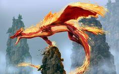Fire Dragon Wallpaper HD with High Resolution Wallpaper 2560x1600 px 323.31 KB