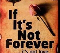 Free download sorry you are not my type novel pdf pdf pinterest free download if its not forever novel pdf fandeluxe Image collections