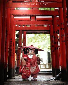 Collection of photos showing the beauty of Japan including landscape photos,Japanese martial arts, Samurai history and beautiful Japanese women. Japanese Kids, Japanese Things, Japanese Style, Torii Gate, Geisha Art, Art Asiatique, Japanese Landscape, Art Japonais, Japanese Aesthetic