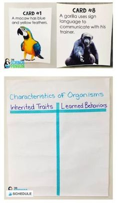 Science Vocabulary Ideas  |  Vocabulary is one of the most important aspects for testing success. -- Collaborative anchor charts for inherited traits and learned behaviors.
