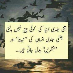 474 Best Quotes Of The Day Urdu Images In 2019 Urdu Quotes