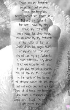 These are my Footprints, are forever ingrained upon our hearts forever. Love and miss you Zephyr. XOXOXOXO'S...