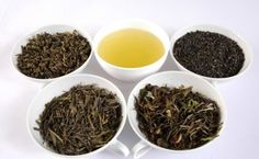 Why green tea is so good for you