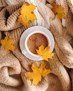 Autumn is amazing for travel. It's not as cold in winter, it's simply not as hot as summer and the nature give the place the unique beauty that can't be replicated. If you want to see where to travel this season, check out this post right now! Autumn Coffee, Autumn Cozy, Slushies, Photoshop Design, Pause Café, Autumn Aesthetic, Coffee Cafe, Photo Instagram, Autumn Inspiration
