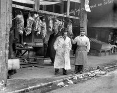 Photograph - Vintage Butcher Shop Possums/Opossums 1916 | eBay