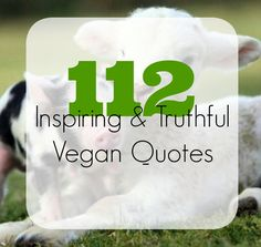Who doesn't love a good, inspiring quote? Whether you are vegan now or thinking about transitioning, these quotes are thought-provoking and powerful. Enjoy, and please feel free to add to this list...