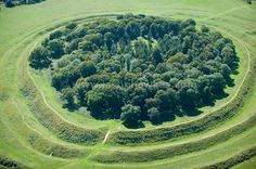 Badbury Rings... the best Iron Age fort to play in that I know. Those ditches were so fun to slide down. There's probably fences up now.. it looks a lot less chalky than I remember