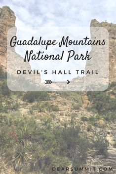 The dramatic Guadalupe Mountains of rise up out of the Chihuahuan Desert in West Texas, harboring a surprising oasis of greenery in its valleys despite having virtually no water source. But the contrast between what these mountains are today and their beginning, eons ago, is a bit ironic. Thes