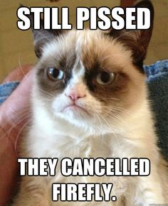 still pissed they cancelled firefly - Grumpy cat