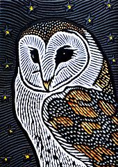Barn Owl (Lisa Brawn) Tags: art birds woodcuts popart woodcut wildbirds