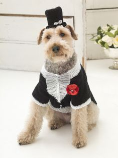 The Barking Groom Tuxedo And Top Hat. Crochet Knit this adorable tux for your best friend for #NationalDogDay! Pattern calls for 3 balls of Vanna's Glamour in black and white, plus one pack of Lion Brand Bonbons. Pattern calls for size G-6 and H-8 crochet hooks.