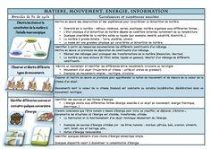 Sciences et technologie cycle 3