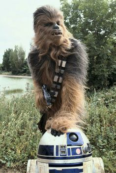 Chewie and R2D2