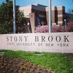 Spring at Stony Brook University Fire Island, Long Island, Stony Brook New York, Stony Brook University, I Love Ny, State University, Scenery, Nyc, College