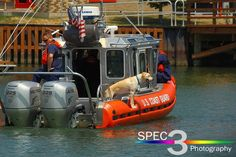 """An Ohio-based photographer caught a Station Lorain crew with """"all paws on deck."""" Stay safe if you are out on the water today! - © 2012 Paul L. Csizmadia/Spec3 Photography"""