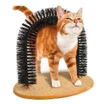 Brinquedo Arco Massageador Arranhador Gatos Com Catnip