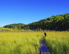 Boardwalk at the far end of Hattie Cove - hiking the Coastal Trail in Pukaskwa NP