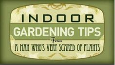 Indoor Gardening Tips from a Man Who's Very Scared of Plants — Saturday Night Live