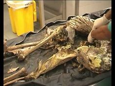 ▶ demystifying forensic anthropology part 1 - YouTube                                                                                                                                                      More