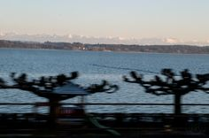 Panorama auf dem Heimweg am Neuenburgersee entlang! Mountains, Nature, Travel, Instagram, Photos, Geneva, Switzerland, Naturaleza, Viajes