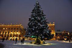 Origineel: bezoek eens een kerstmarkt in Frankrijk! De Lorraine is dichtbij en in steden als Metz, Nancy, Plombières-les-Bains en Epinal kun je heerlijk sfeerproeven. Kerst in Metz Eén kerstmarkt die je niet mag overslaan is die van Metz. Nog tot 28 december wordt het centrum omgetoverd tot een kerstdorp: op verschillende pleinen staan kerstmarkten metLees meer Lorraine, Champagne, Christmas Tree, French, Holiday Decor, City, Teal Christmas Tree, French People, Xmas Trees