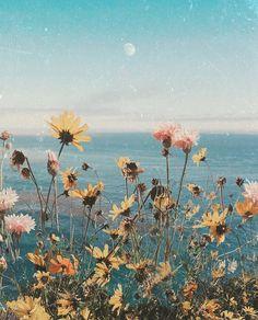ᴮᴿᴱᴬᵀᴴᴱ ᵂᴵᴸᴰ, ᴮᴸᴱᴱᴰ ᴸᴼᵛᴱ ~ ᵂᴵᴸᴰᴱᴿ Dreamy pic by the talented beauty xo Aesthetic Backgrounds, Aesthetic Iphone Wallpaper, Aesthetic Wallpapers, Nature Aesthetic, Flower Aesthetic, Aesthetic Grunge, Flower Wallpaper, Wallpaper Backgrounds, All Nature