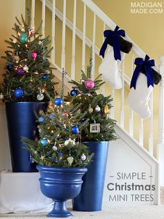 So pretty! Simple (Mini!) Christmas Trees Displayed in Plant Pots
