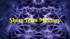 Short Term Memory and How Long Does It Last For
