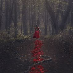 Hope for the Hopeless: red riding hood
