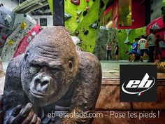 #boulder #eb #climbinggym #escalade #bouldering #blockout #team #climbing #gorilla #chausson #test #bootdemo #bloc #guardian #django #captain