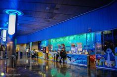 Poze de la Oceanograful din Valencia Valencia, City Break, Times Square, Basketball Court, Travel, Viajes, Destinations, Traveling, Trips