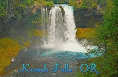 A coffee mug featuring Koosah Falls on the McKenzie River - OR Travel Bugs, Niagara Falls, Coffee Mugs, Waterfall, Outdoors, River, Nature, Photography, Image