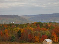 Gorgeous NY Fall Foliage - Kueka Lake, Finger Lakes, NY