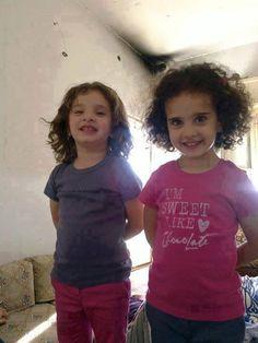 BARBARIE. Syrie : les amis de François Hollande extermine une famille plaisible