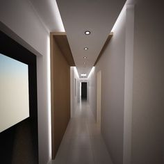 Modern Hall Design Ideas, Pictures, Remodel and Decor