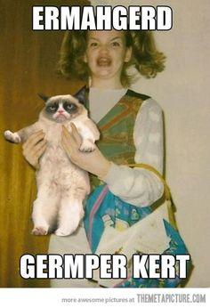 grumpy cat meme | funny-grumpy-cat-angry-meme