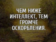 The lower intelligence, the louder the insults. Brainy Quotes, Motivational Quotes, Inspirational Quotes, Some Quotes, Wisdom Quotes, Famous Quotes, Best Quotes, Russian Quotes, Different Quotes