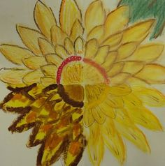 4 media sunflower, by my student Kaitlyn, grade 4