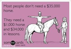 Most people don't need a $35,000 horse.  They need a $1,000 horse, and $34,000 worth of lessons.