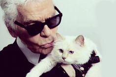 Choupette Lagerfeld, Karl Lagerfeld's Cat, Made $3.23 Million Last Year