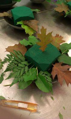 Sette på grønt Parsley, Herbs, Food, Meal, Essen, Herb, Hoods, Meals, Eten