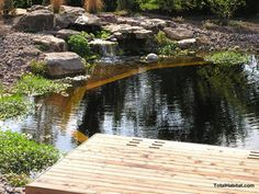 Natural Swimming Pool/Pond with Pier