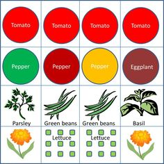 """Starter Veggie Garden, 4x4: We designed a garden plan based on square foot gardening in a small space. """"Start small"""" is the top tip I hear from other gardeners and authors. Having a plan makes it so easy. So, here you go, a starter vegetable garden plan for a 4′ x 4′ area:"""