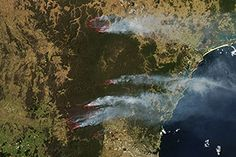 Fires in New South Wales, Australia : Natural Hazards : NASA Earth Observatory