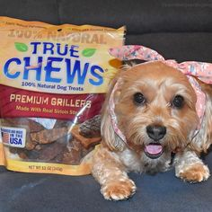 Sadie is one happy dog with her steak dog treats from @TrueChews!  #TastyTuesday #TongueOutTuesday #sponsored by @Chewy ___________ #TopDogPhoto #petloverz1 #pocket_pets #sweetpetclub #PawsomeDawgz #my_pet_feature #pets_perfection #bestfriends_dogs #petoftoday #feature_do2 #FurrendsUpClose #eb_dogs #sendadogphoto #captainandhound #Doggiez4Doggiez #cutepetshots #theloveablepets #doglife #simplepetlove #prouddogparents #ilovemydog #mydogiscutest #thedodo #dog_features #delight_pets #bestwoof…