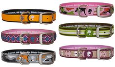 Dublin Dog recognized the problem of stinky collars and decided to launch a line of collars for the extra-smelly mutts called All Style, No Stink.
