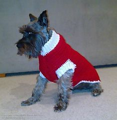 Ravelry: Striped Dog Coat pattern by Bernat Design Studio
