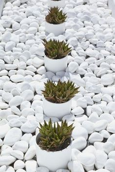 plants pinned by barefootstyling.com Katikies Luxury Hotels in Oia, Santorini
