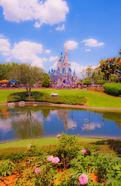 The real cost of a Walt Disney World vacation.